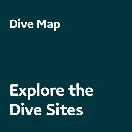 Dive Map - Morotai Dive Sites